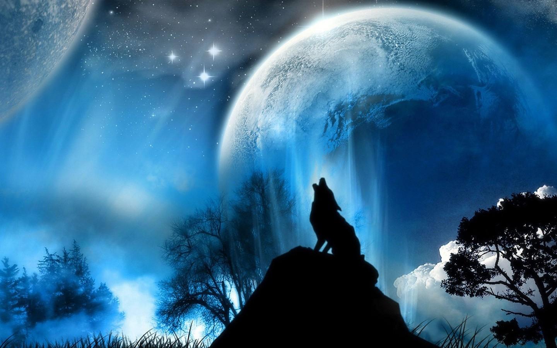 moon_stars_wolves_1440x900_89313